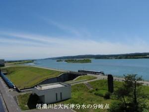 7 信濃川と大河津分水の分岐点